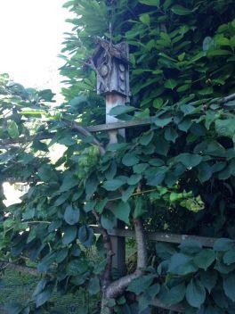 portland-garden-tour-west-sept-13-c3cc1ef1963a8ba3.jpg