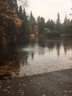 reflections lake November.jpg
