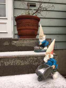 gnome end snow.jpg
