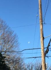 moon-morning.jpg