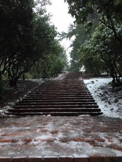 park steps snow.jpg