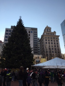unlit tree downtown .jpg