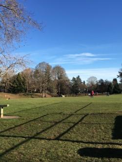Fernhill Park.jpg
