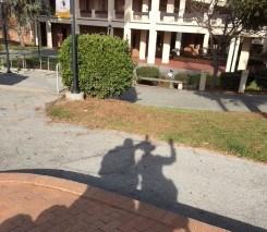 liza-me-panther-shadow.jpg