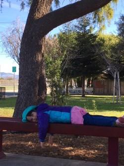 Liza mission park bench.jpg
