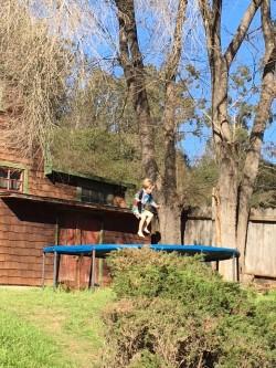 Rhys trampoline.jpg