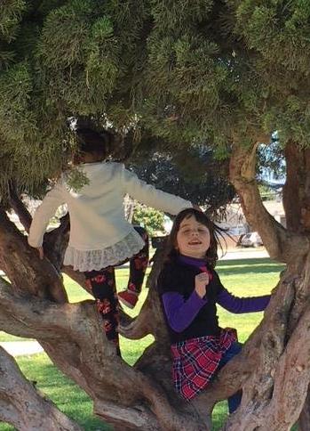 Liza in a tree