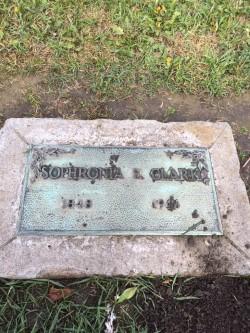 Saphronia grave.jpg